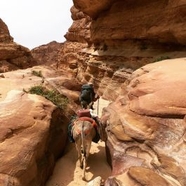 all-day-walking-through-canyons-1