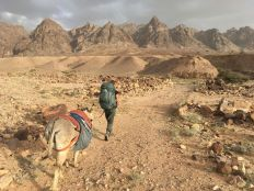 walking-into-the-desert